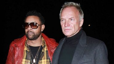 shaggy_and_sting